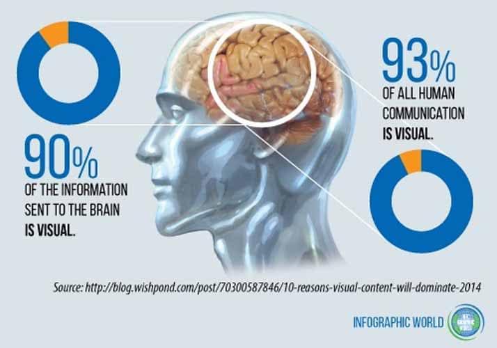 Les histoires changent litteralement la perception du cerveau humain