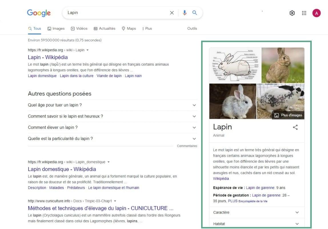 Recherche Google Lapin