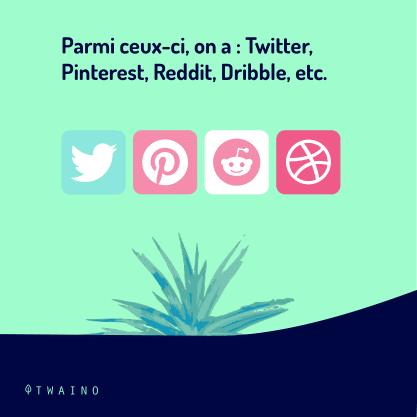 PARTIE 9 Carrousel_Favoris_ou_Bookmark.pptx-07 Twitter interest Reddit DRibble