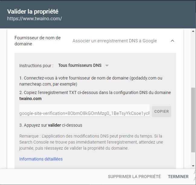 Verification au travers du fournisseur du nom de domaine